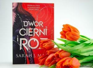 Dwór cierni i róż