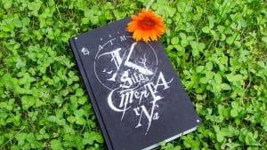 Księga cmentarna Neil Gaiman